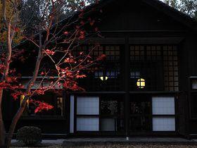 紅葉とライトアップで更にノスタルジック。秋の江戸東京たてもの園|東京都|トラベルjp<たびねす>