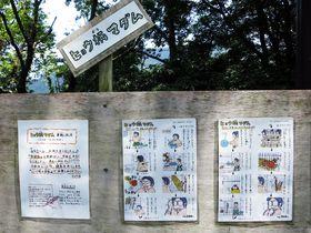 飼育員さんのマンガエッセイが笑えるww!広島・安佐動物公園が楽しい|広島県|トラベルjp<たびねす>