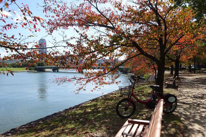 秋は紅葉、春は桜、広島は岸辺が美しい