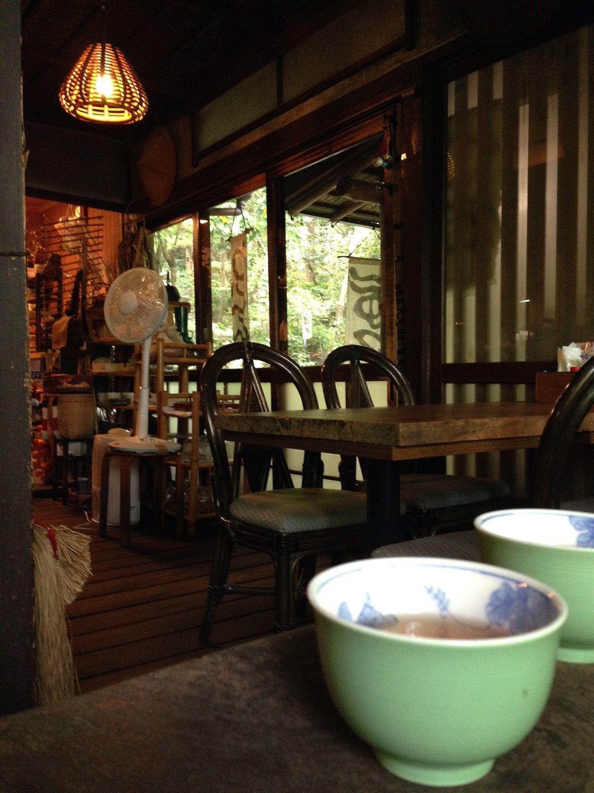 木陰の茶房「空点庵」では珍しいモリアオガエルを見ることができます