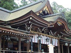 万葉集にも詠われた奈良「山の辺の道」の3時間散策はいかが!|奈良県|トラベルjp<たびねす>