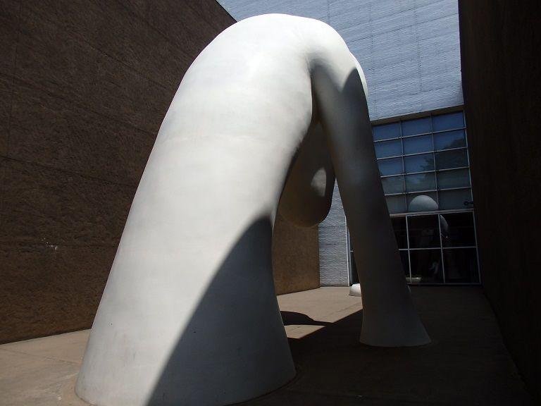 青森県立美術館のあおもり犬の表情を間近でチェック