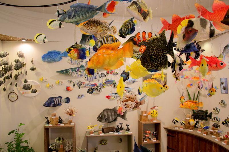 それでも海が恋しい時は可愛いお魚天国のお店へ