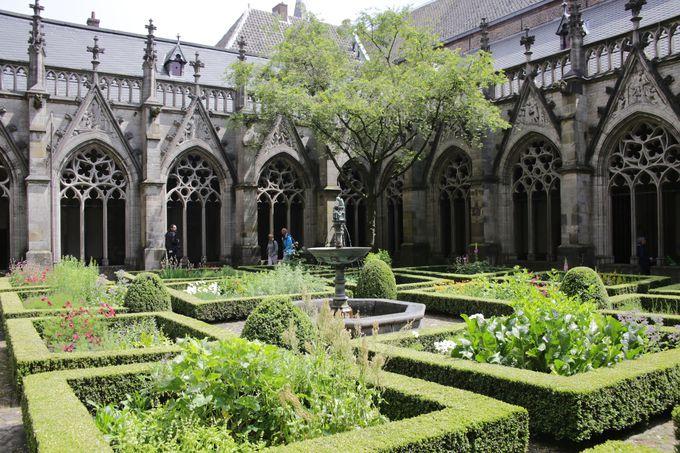 綺麗に整備された中庭