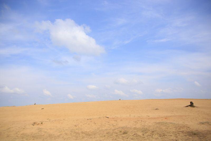 砂丘が見せる圧倒さ