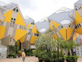 現代ツリーハウス!?からくり屋敷のような蘭「キュービックハウス」