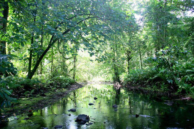万華鏡の川