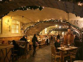 カルロヴィ・ヴァリの文化が詰まっているチェコ料理屋「カレル4世」