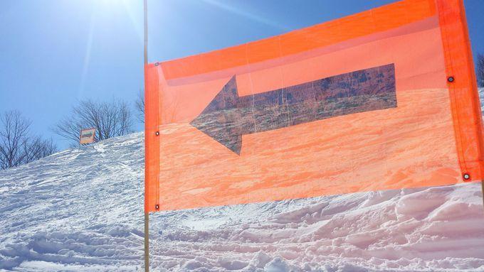 雪が豊富な3月に行きたい!スキー・スノボにおすすめスキー場5選