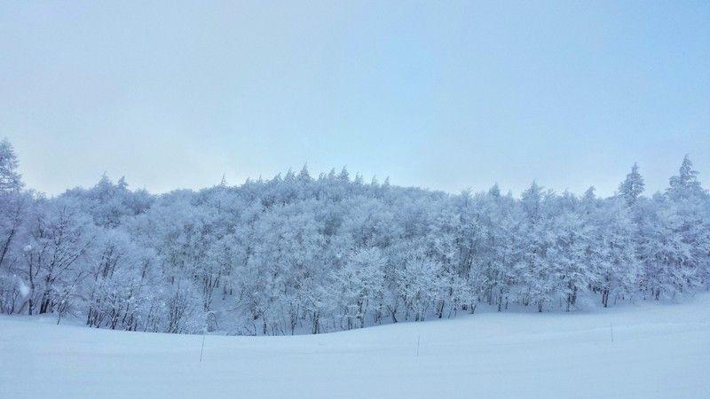 別世界の山頂に情緒ある温泉街!山形「蔵王温泉スキー場」