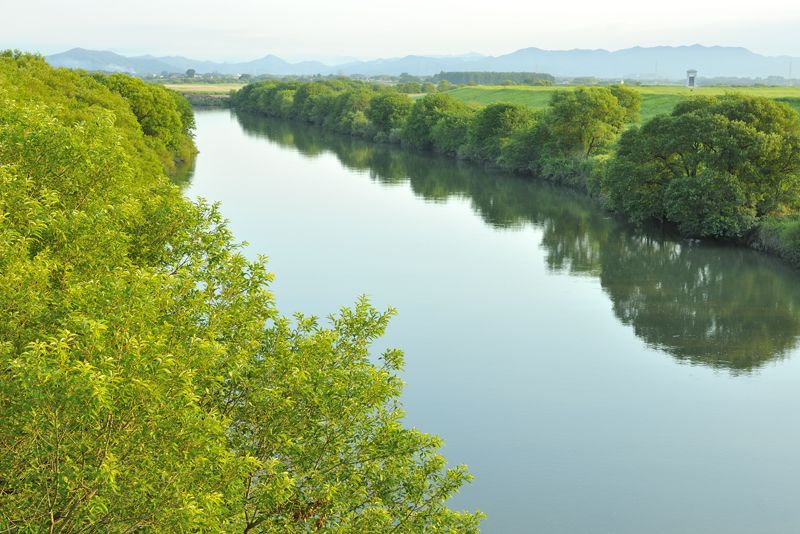 遊水地の中央を流れる渡良瀬川