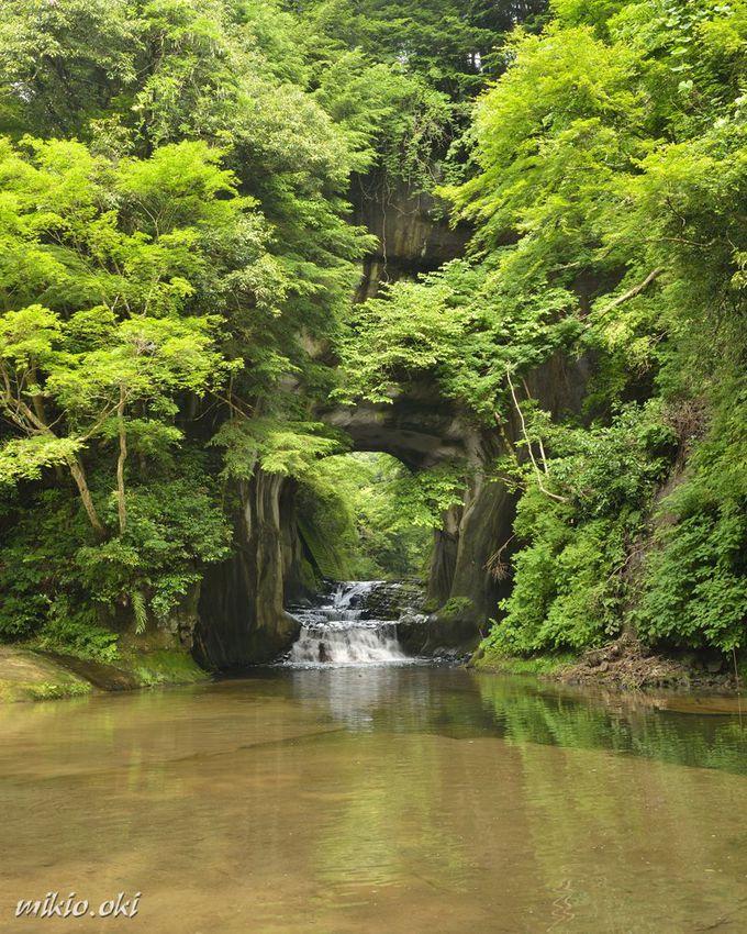 岩のトンネルが神秘的!房総半島の秘境「濃溝の滝」