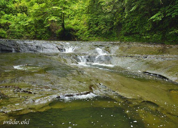 濃溝の滝から続く秘境の渓流