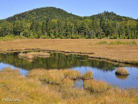 奥鬼怒の秘境・鬼怒沼湿原~天空の湿原と温泉を満喫するトレッキング|栃木県|トラベルjp<たびねす>