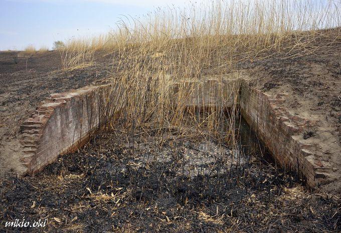 谷中村排水施設〜渡良瀬遊水地に残る赤煉瓦の遺構