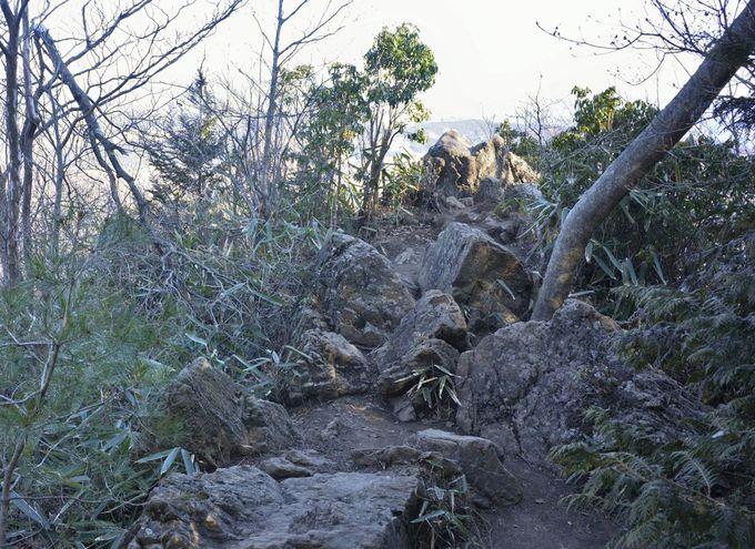 御岩山の山頂・展望の賀毗禮の高峰