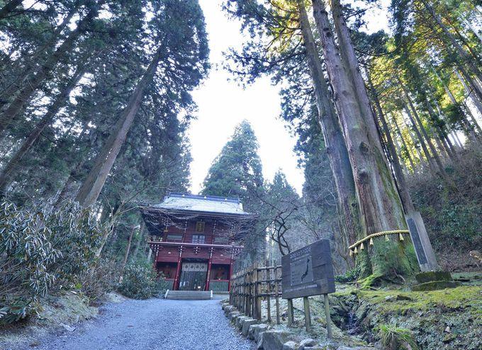 太古の地に鎮座する霊山・御岩神社