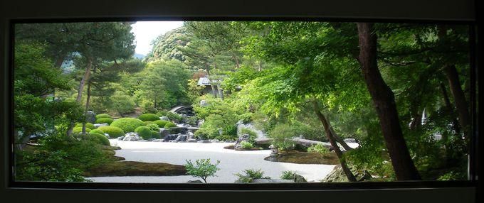 落ち着いた雰囲気を楽しむ「苔庭」