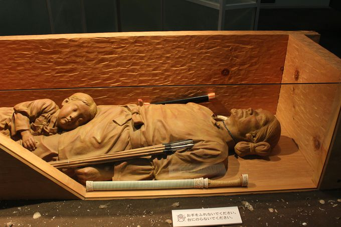 松戸市立博物館とは