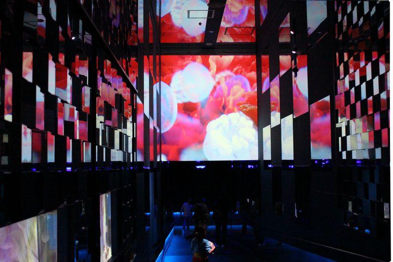 東京「すみだ水族館」が蜷川実花氏と再コラボ!幻想的なクラゲ展示を見に行こう