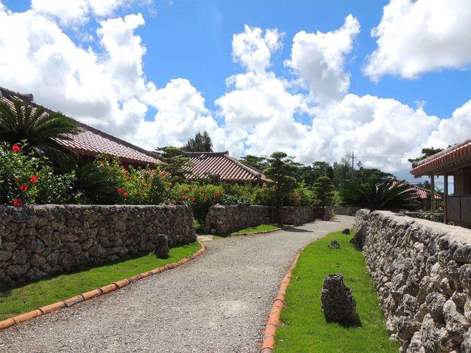 石垣と緑に囲まれた赤瓦家屋の集落