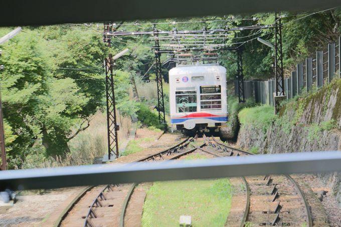 鹿もお気に入りの高低差日本一の「叡山ケーブルカー」に乗って