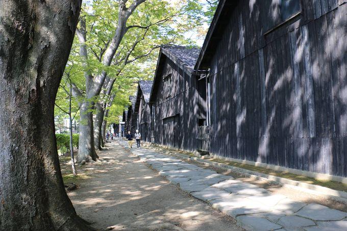 北前船交易の栄華の面影を訪ねて山形 港町「酒田」