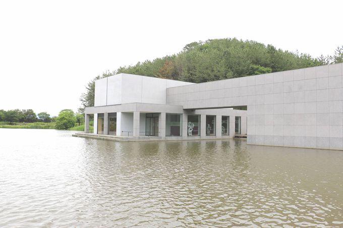 「土門拳記念館」で迫力ある世界に触れる