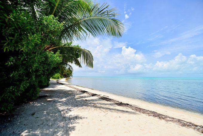 世界で最も美しいビーチの一つ、ハーフムーン島へのアクセス拠点
