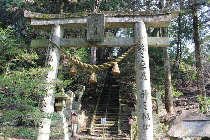 神仏習合の証「奥の院」に通じる鳥居