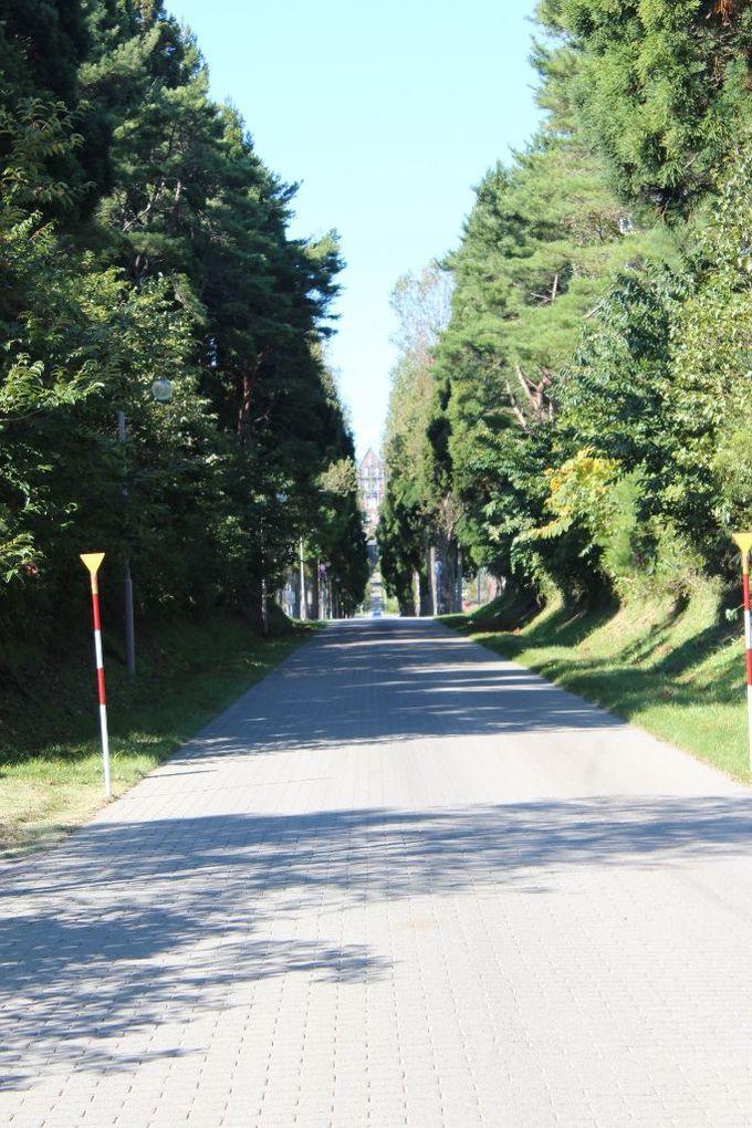 沈黙の空間がローマの道から始まる「トラピスト修道院」