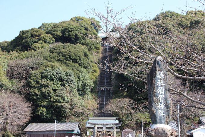 存在感のある153段の急な階段が印象的な「須賀神社」