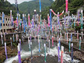 杖立川に無数の鯉のぼりが泳ぐ!阿蘇郡小国町「杖立温泉」|熊本県|トラベルjp<たびねす>