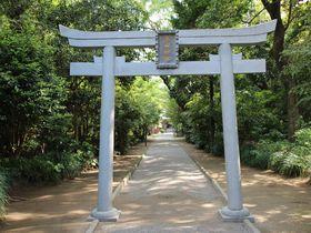 「神話のふるさと」宮崎で最強のパワースポット!「江田神社」|宮崎県|トラベルjp<たびねす>