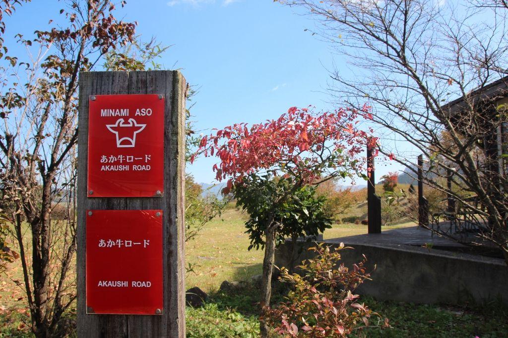 南阿蘇「あか牛ロード」で阿蘇地方の名産「あか牛」に舌鼓