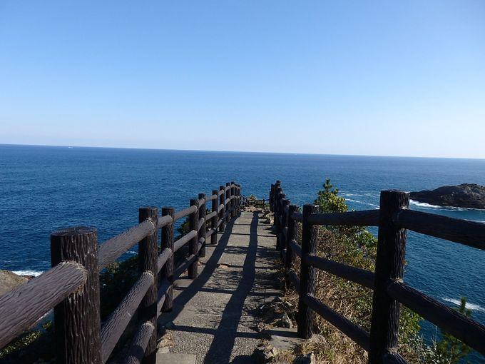 太平洋を一望!開放感たっぷりの絶景スポット「馬ケ背」