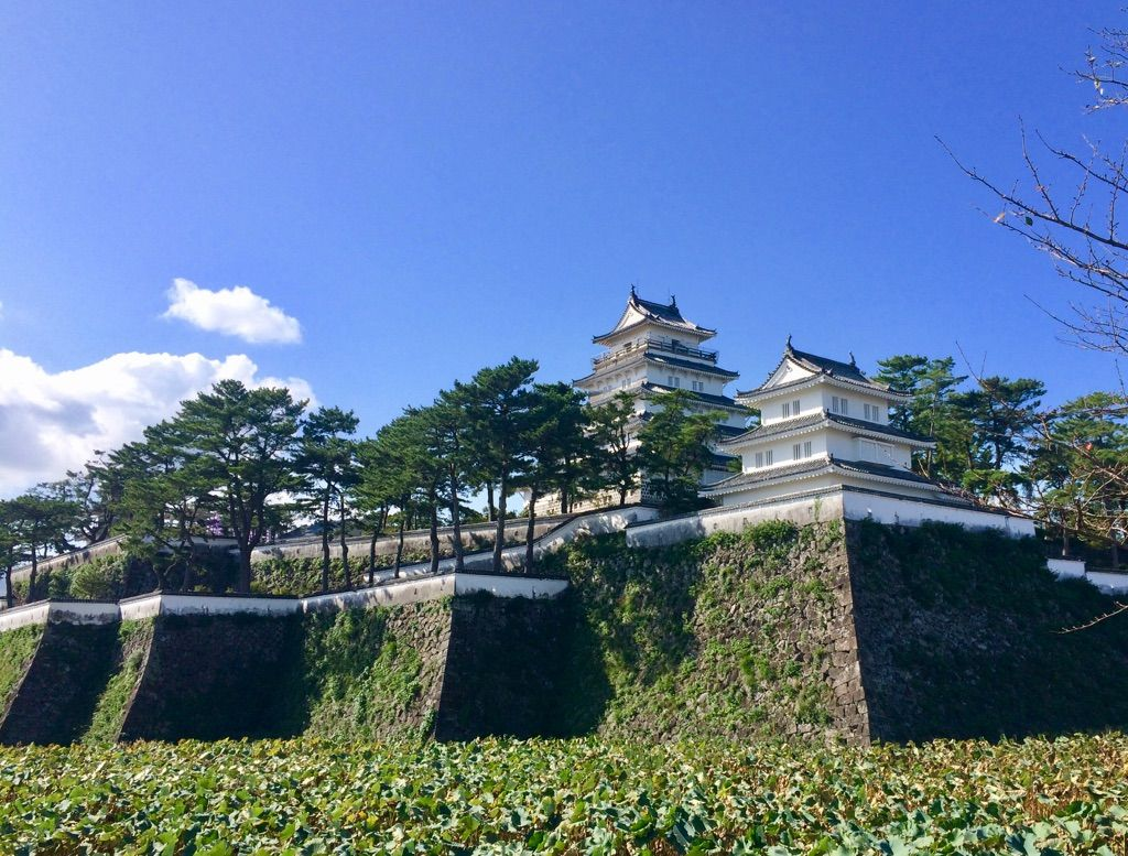 旅の起点は「島原城」最上階から島原の全景を確認!