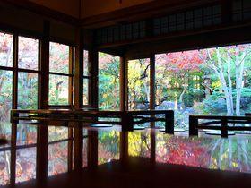 「さやの湯処」、ここはツウ一押しの東京の日帰り温泉
