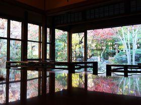 昭和の息づく古家を再生!東京のデザイナーズ日帰り温泉「さやの湯処」|東京都|トラベルjp<たびねす>