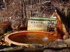 群馬で驚きのアワアワシュワシュワ温泉「滝沢温泉・滝沢館」は赤城山麓の秘湯|群馬県|トラベルjp<たびねす>