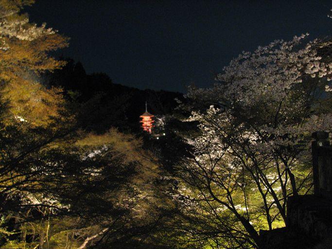 清水寺の見所は「清水の舞台」からの桜だけじゃない!