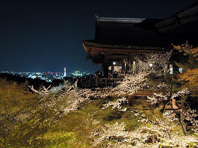 清水寺の千手観音とライトアップされた清水の舞台