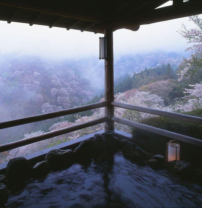 吉野山の桜と宝の家の絶景天空露天風呂