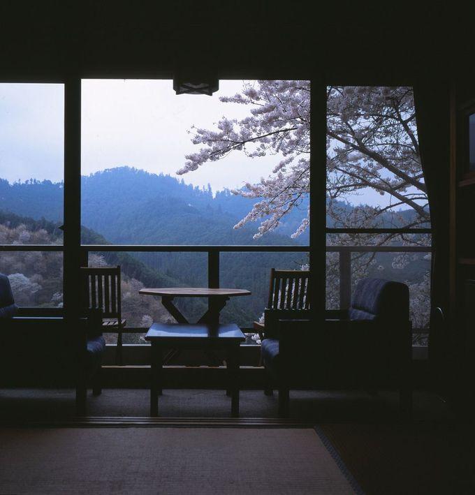 千本桜を見下ろす吉野山の旅館「宝の家(ほうのや)」