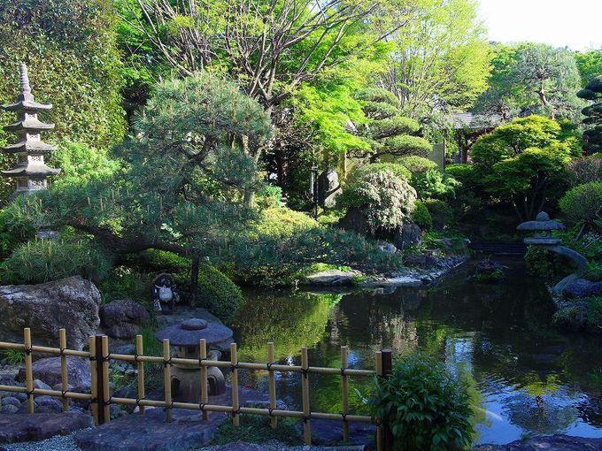 見沼の温泉「小春日和」で寛ぐ