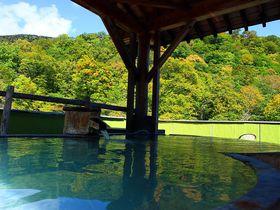 山と渓流の絶景混浴露天風呂!福島の秘湯「幕川温泉 水戸屋旅館」|福島県|トラベルjp<たびねす>