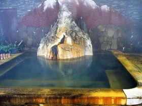 やすっ!2千円台で泊まれちゃう 栃木・塩原温泉「静観荘 古山」のお風呂には山が!?|栃木県|トラベルjp<たびねす>