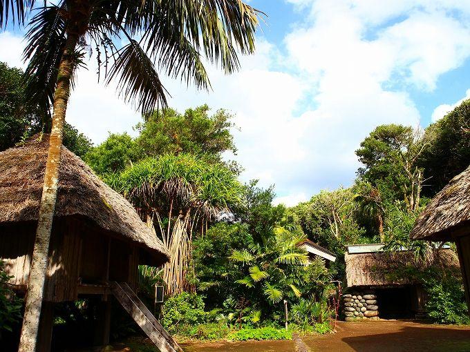 ドライブ途中で八丈島の地熱発電や伝統的建築物を学ぶ