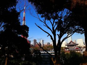東京タワーの隣に古墳があるって知ってた?「芝丸山古墳」|東京都|トラベルjp<たびねす>