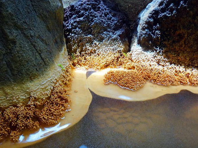 「赤城温泉ホテル」は群馬のお洒落秘湯!温泉が作る珊瑚の花
